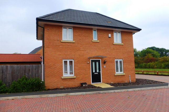 Thumbnail Detached house for sale in Herald Way, Gunthorpe, Peterborough