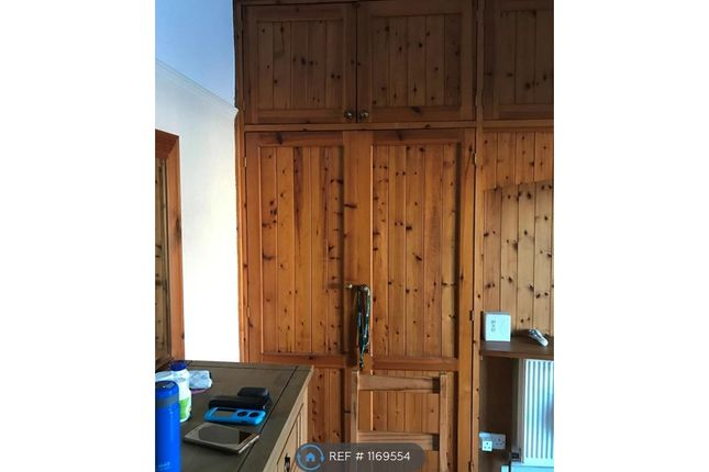 Thumbnail Semi-detached house to rent in High Street, Bangor