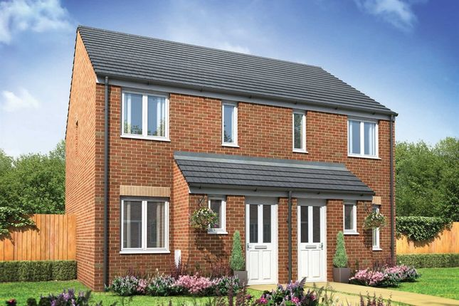 """Thumbnail Semi-detached house for sale in """"The Alnwick """" at Stane Street, Billingshurst"""