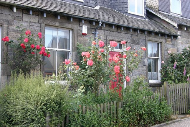 Thumbnail Cottage for sale in 37 Main Street, Newton, South Queensferry