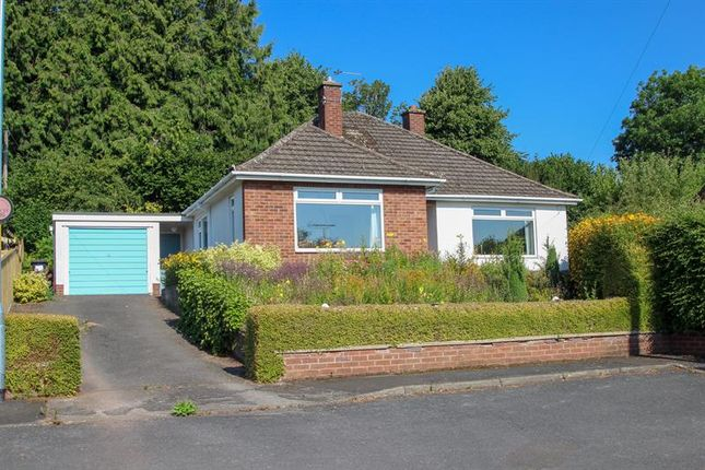Thumbnail Detached bungalow for sale in Princess Way, Ross-On-Wye
