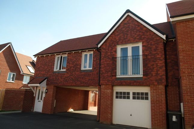 Thumbnail Flat to rent in Hedley Way, Hailsham