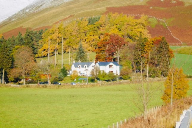 Thumbnail Leisure/hospitality for sale in Gulabin Lodge, Spittal Of Glenshee, Perthshire