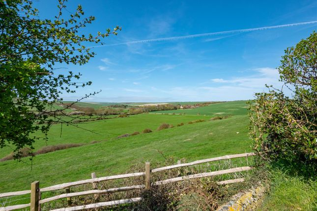 View From Garden of Hill Rise, Seaford BN25