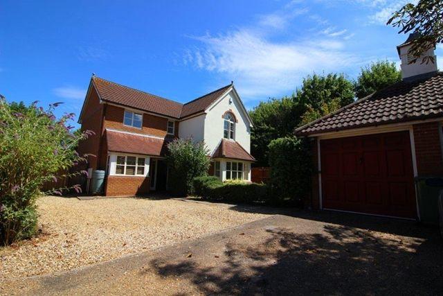 Thumbnail Detached house to rent in Rhoscolyn Drive, Tattenhoe, Milton Keynes