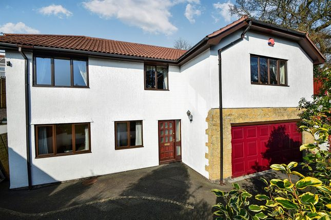 Thumbnail Detached house for sale in Upper Cockington Lane, Torquay