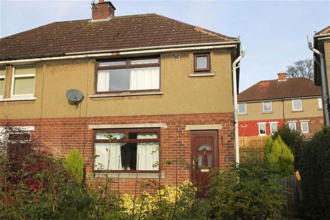 Thumbnail Semi-detached house to rent in Shirley Place, Wyke, Bradford