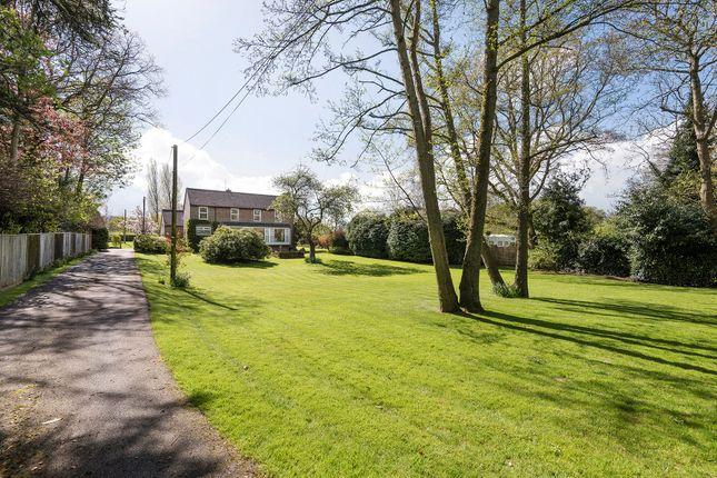 Thumbnail Detached house for sale in Swife Lane, Broad Oak, Heathfield, East Sussex