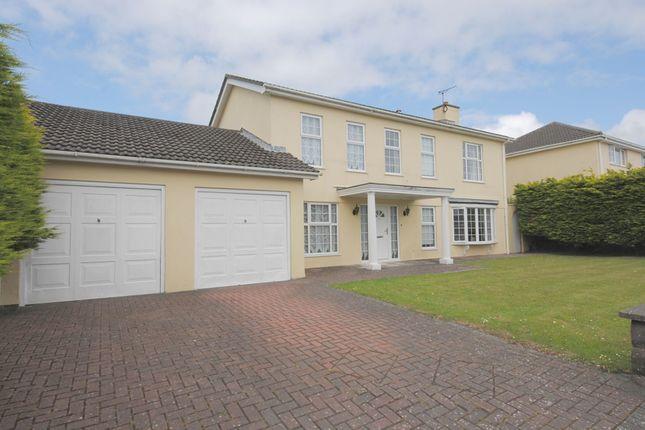 Thumbnail Detached house for sale in Cronk Drean, Douglas, Isle Of Man