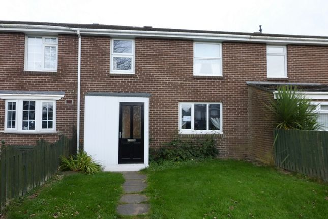 Thumbnail Terraced house to rent in South Magdalene, Medomsley