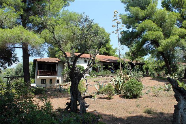 Thumbnail Detached house for sale in Nikitas, Chalkidiki, Gr
