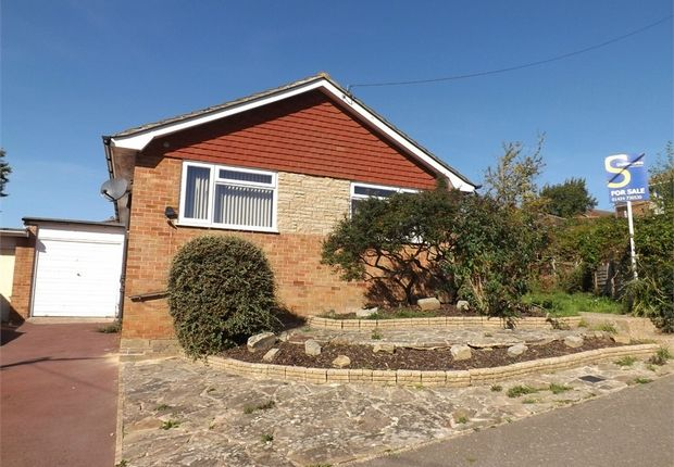 Thumbnail Detached bungalow for sale in Long Avenue, Bexhill-On-Sea, East Sussex
