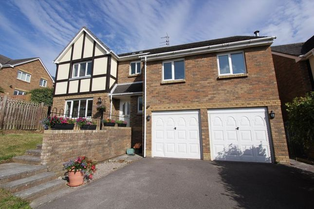 Thumbnail Detached house for sale in Nyth Yr Eos, Rhoose, Barry