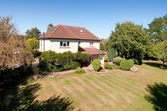Thumbnail Detached house for sale in Hale Street, East Peckham, Tonbridge