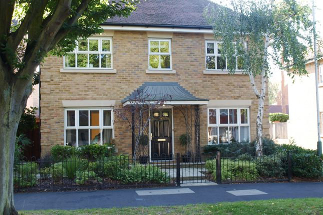 Thumbnail Detached house to rent in Avenue Road, Harold Wood