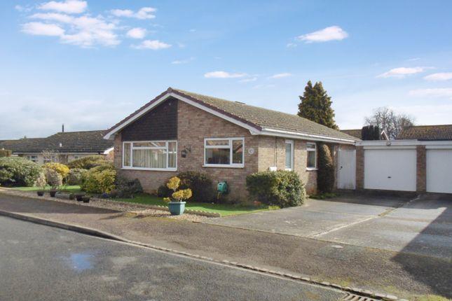 Thumbnail Detached bungalow for sale in Park Close, Moggerhnager
