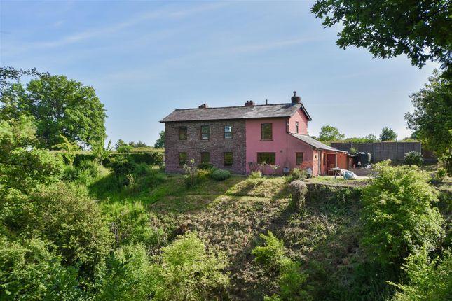Thumbnail Cottage for sale in Haywood Lane, Ashperton, Ledbury
