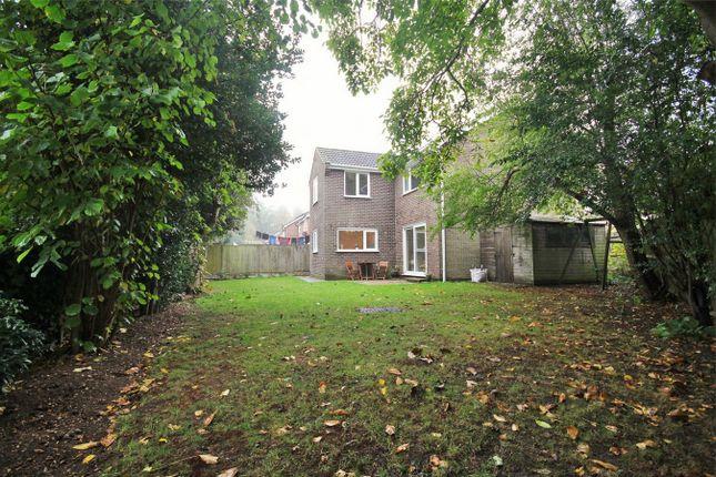 Thumbnail Detached house for sale in Byron Avenue, Lexden, Colchester, Essex