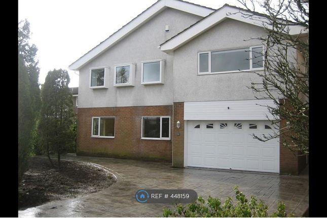 Thumbnail Detached house to rent in Riverside Drive, Hambleton