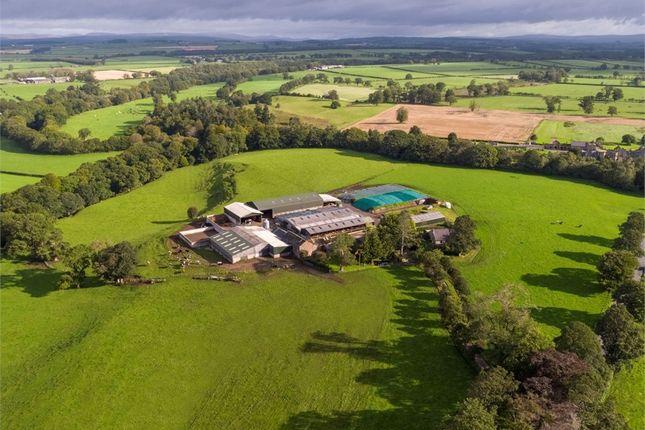 Thumbnail Detached house for sale in Lot 1 - Stubb Farm, Kirklinton, Carlisle, Cumbria