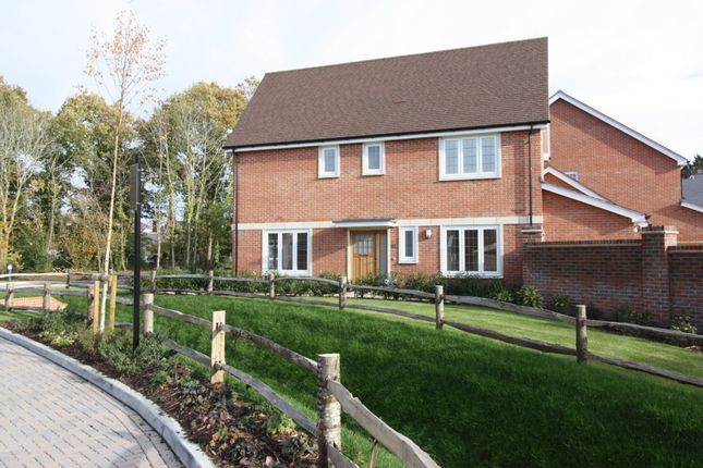Thumbnail Detached house to rent in Box Grove, Cranleigh
