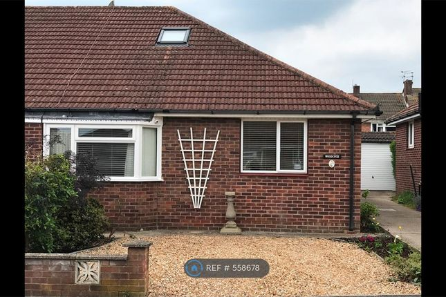 Thumbnail Bungalow to rent in Springfield Close, Havant