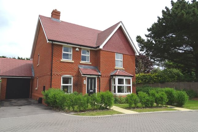 4 bed detached house for sale in Sackville Gardens, Barnham, Bognor Regis