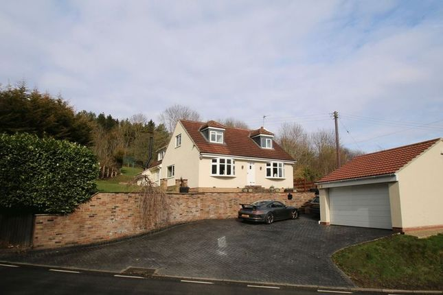 Thumbnail Detached house for sale in The Homestead, Leven Bank Road, Yarm