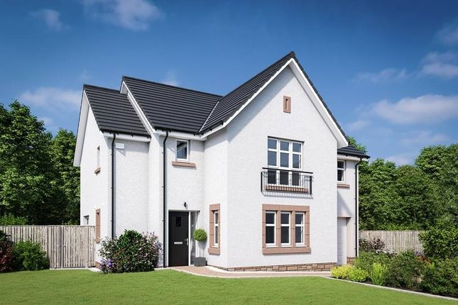 "Thumbnail Detached house for sale in ""The Cleland"" at Edinburgh Road, Belhaven, Dunbar"