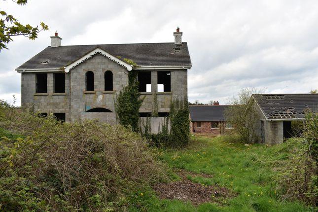 Thumbnail Detached house for sale in Blackskull Road, Dromore