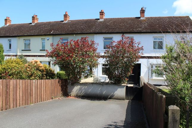 Thumbnail Terraced house to rent in Gilnahirk Road, Belfast