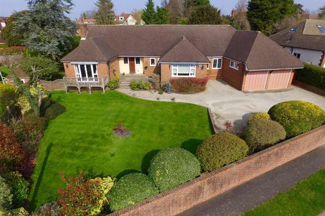 Thumbnail Detached bungalow for sale in South View Road, Ashtead