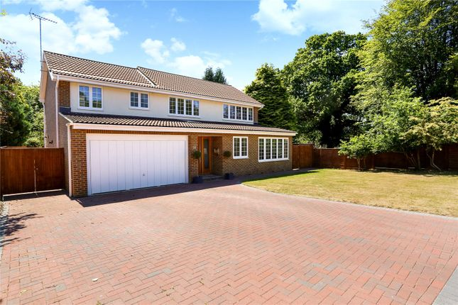 Thumbnail Detached house for sale in Chestnut End, Headley, Hampshire