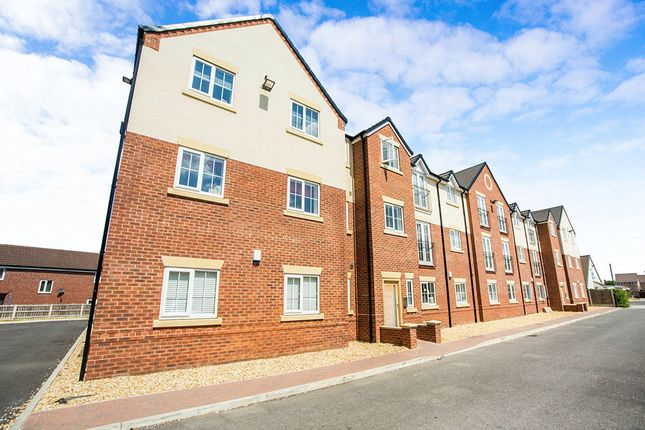 Thumbnail Flat to rent in Fir Tree Avenue, Auckley, Doncaster