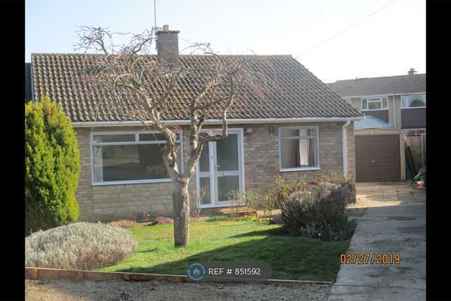 Thumbnail Bungalow to rent in Springfield Road, Oundle, Peterborough