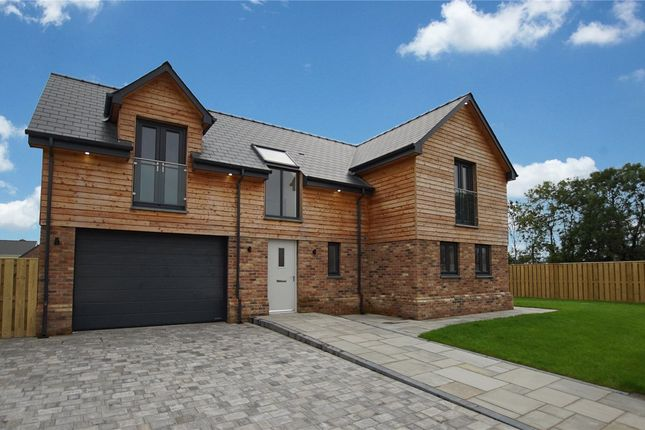 Thumbnail Detached house for sale in Little Cedar Drive, Camrose, Haverfordwest
