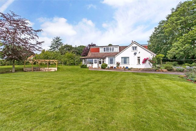 Thumbnail Detached house for sale in Upper Anstey Lane, Alton, Hampshire