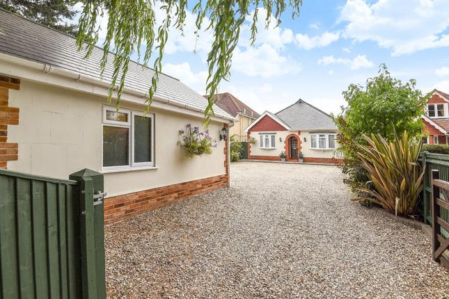 Thumbnail Detached bungalow for sale in Bath Road, Thatcham