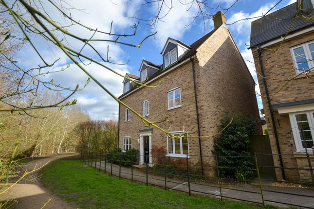 Thumbnail Detached house for sale in Stone Hill, St. Neots