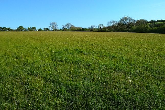 Thumbnail Land for sale in Golden Lion Fields, Caerwedros, Llandysul, Ceredigion.
