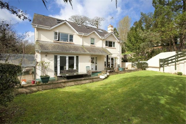 Thumbnail Detached house for sale in Edginswell Lane, Torquay, Devon