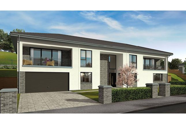 "Thumbnail Detached house for sale in ""The Willow"" at Old Bothwell Road, Bothwell, Glasgow"
