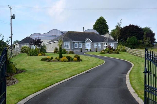 Thumbnail Bungalow for sale in Lurganville Road, Moira, Craigavon