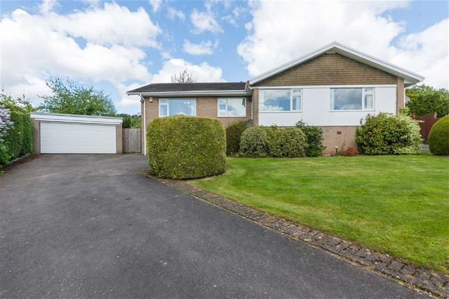 Thumbnail Bungalow for sale in St Cybi Rise, Llangybi, Near Usk, Monmouthshire