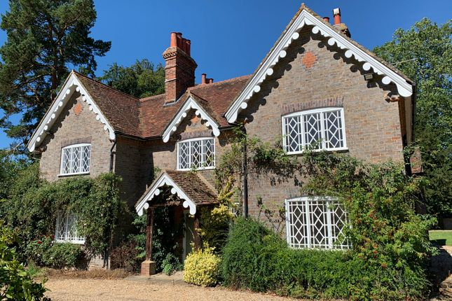 Thumbnail Detached house to rent in The Green, Ockley, Dorking