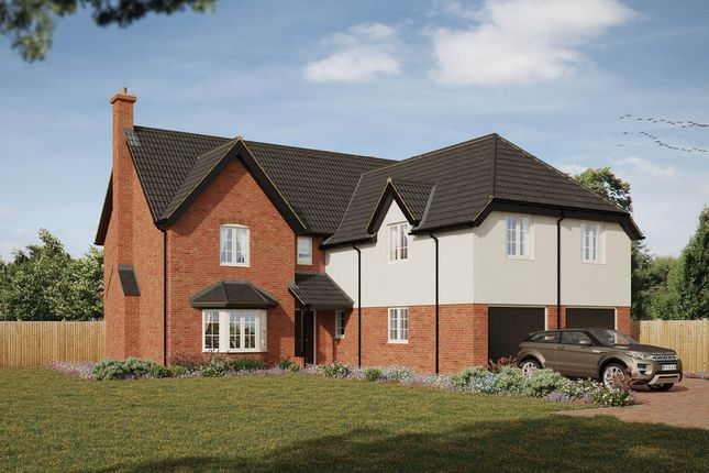 Thumbnail Detached house for sale in St Marys View, Gislingham, Eye