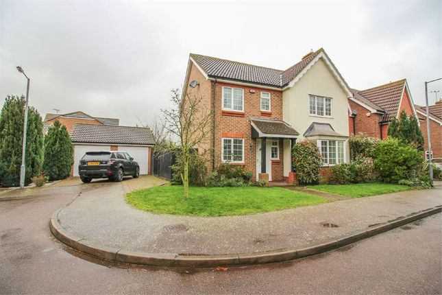 Thumbnail Detached house for sale in Westbury Rise, Church Langley, Harlow, Essex