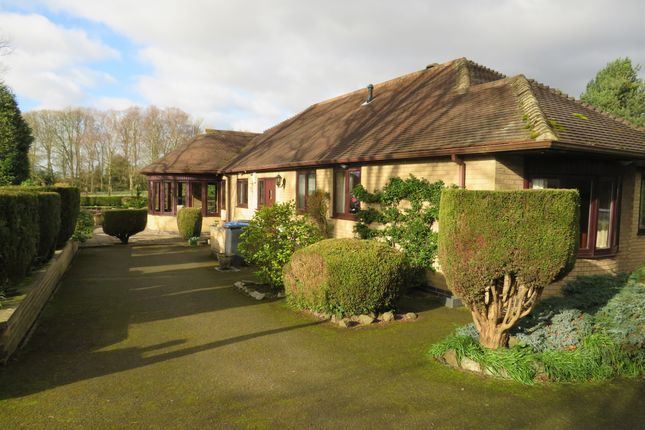 Thumbnail Bungalow for sale in Newbold Road, Barlestone, Nuneaton