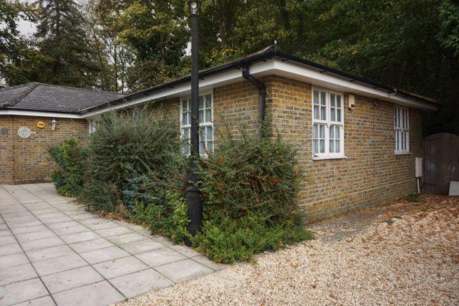 Thumbnail Bungalow to rent in Bassett Green Road, Southampton