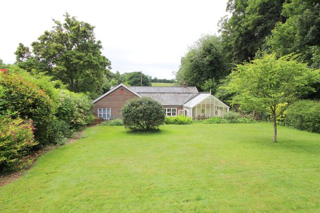 Thumbnail Detached bungalow for sale in West Meon, Petersfield